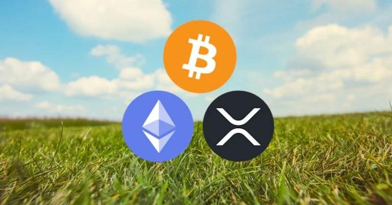 bitcoin-ethereum-xrp-grassy-pasture-clouds-sunny-768x403.webp.jpg